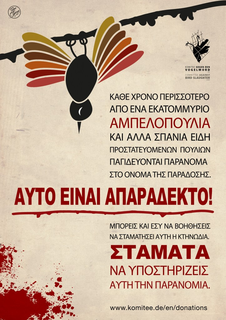 GREEK-version-Songbird-Poster---LR